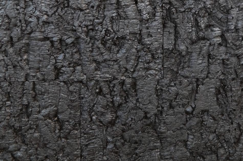 Bark Black